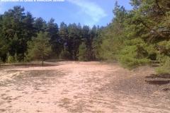 Западный березовый остров, Финская дорога
