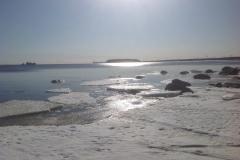 Карасевка, вид на Большой березовый остров