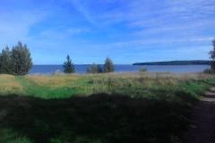 Большой березовый остров, деревня красноостровская