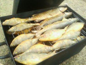 Рыба пойманная у Большого березового острова