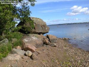 Большой березовый остров фото